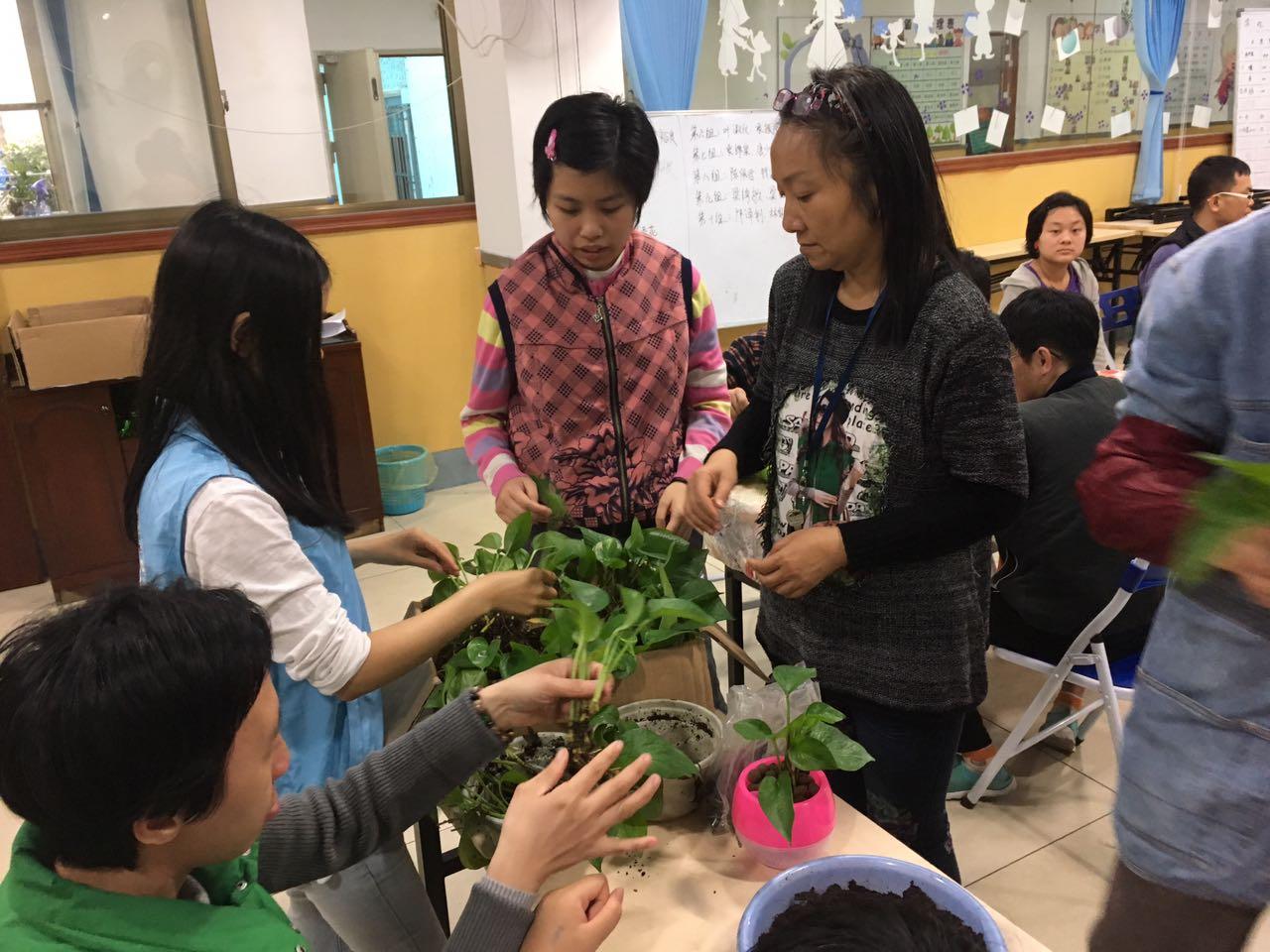 园艺,搭建残障人士与社会沟通的桥梁
