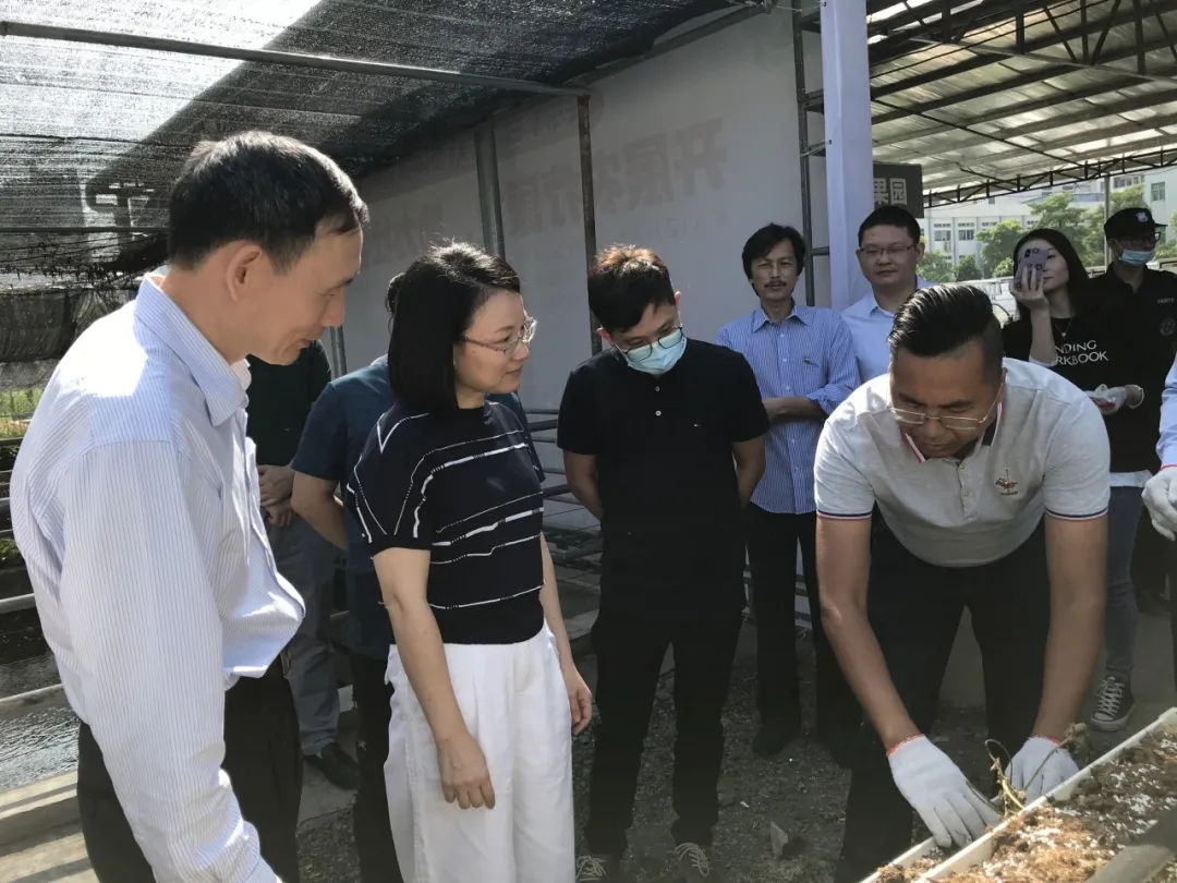"""""""开展农疗康复,助力社会融合""""--长安镇第三期残疾人就业实践体验活动"""